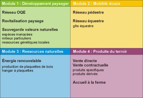 4-modules